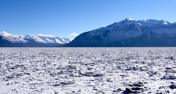 The sea of ice bergs at Turnagain Arm