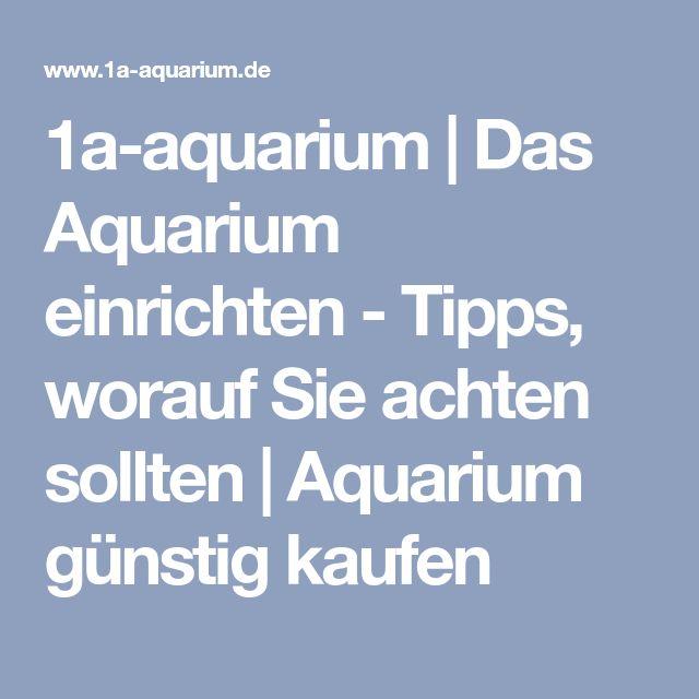 1a-aquarium | Das Aquarium einrichten - Tipps, worauf Sie achten sollten | Aquarium günstig kaufen