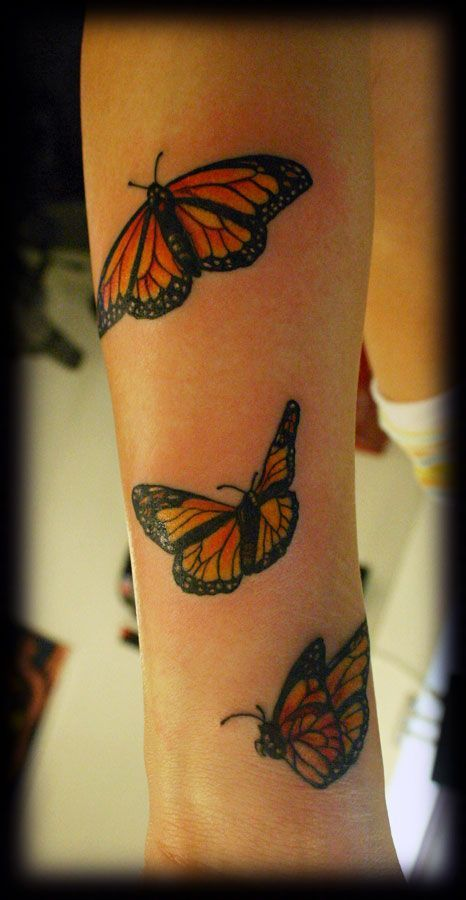 Monarch Butterfly On Flower Tattoo 43 best Blue Mo...