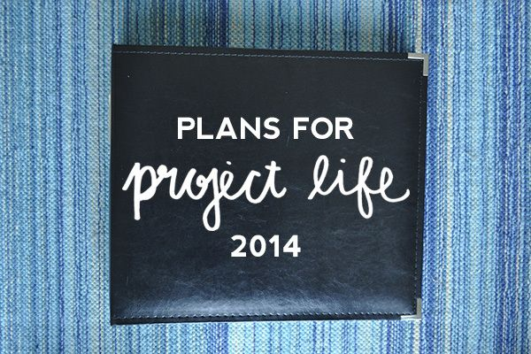 Plans for Project Life 2014
