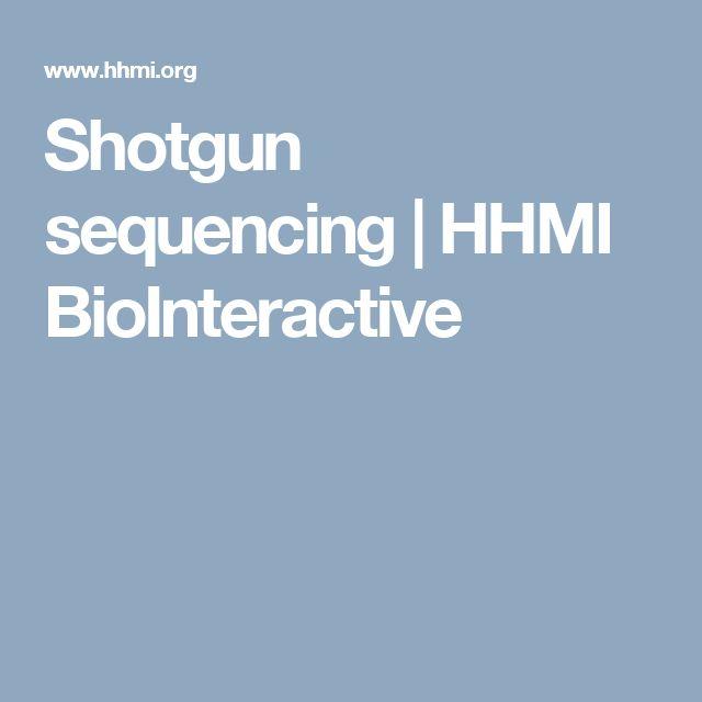 Shotgun sequencing | HHMI BioInteractive
