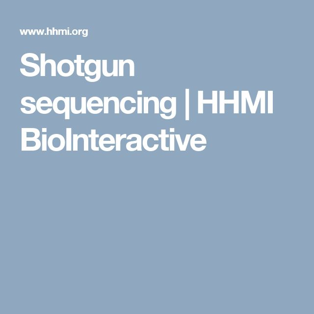 Shotgun sequencing | HHMI BioInteractive