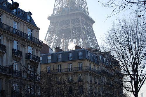 : Buckets Lists, Favorite Places, Eiffel Towers, The View, Beautiful, Paris Street, Backyard, Street View, Photo