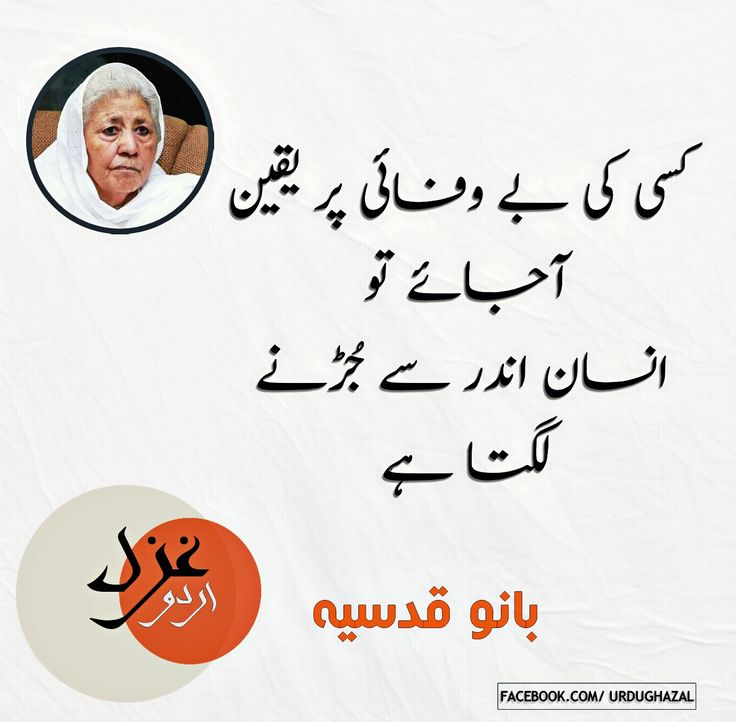 1000 images about bano qudsia on pinterest for Bano qudsia sayings