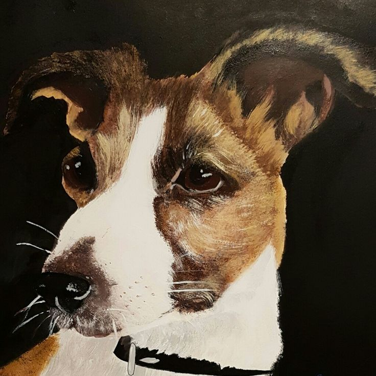Färdigt porträtt hund i akryl