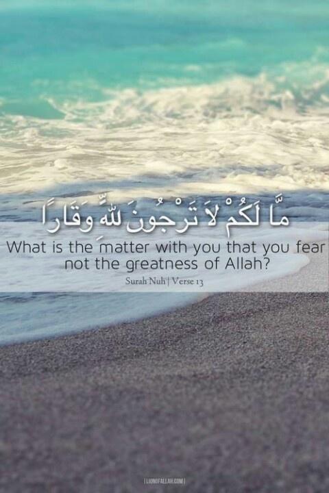 Allah https://www.facebook.com/pages/HzMuhammed-SAV-Prophet-HzMuhammed-SAV/173680862801435