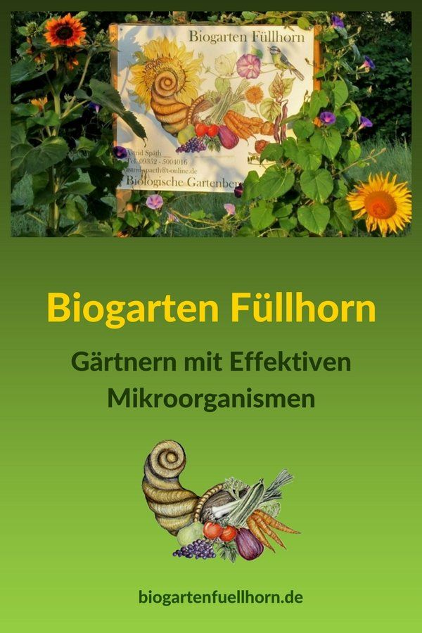 Ein Biogarten Entsteht