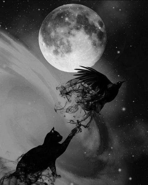 Pleine lune un #18 jour dédié à la #Lune