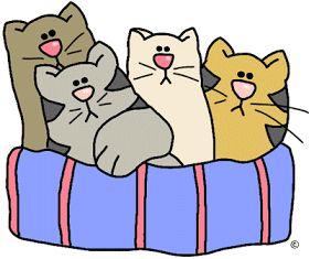 Eu quero fazer também!: Riscos para patchcolagem (appliqué) - gatos