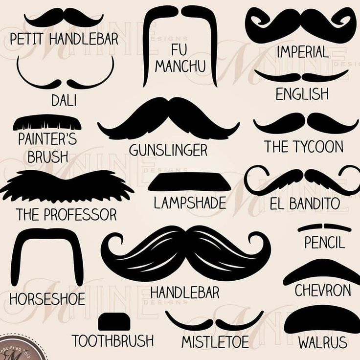 Mustache Styles Mustache Moustache Design