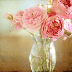 Florabella Texture Video Workshop » Florabella Collection