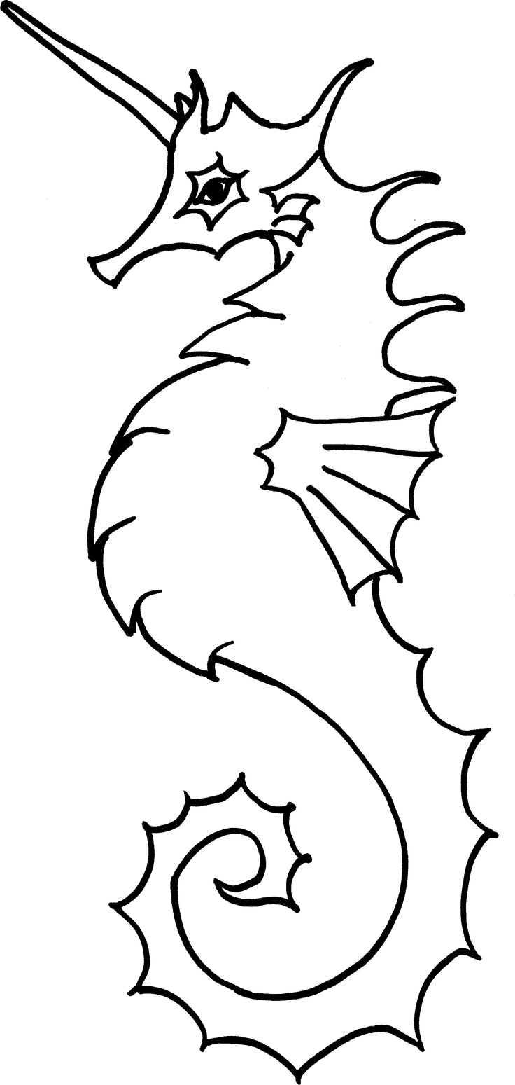 112 best seahorse images on pinterest seahorses coloring pages