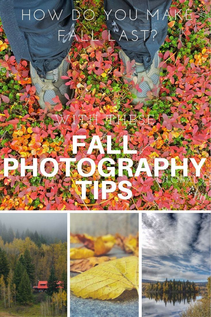 Fall photography tips to use as you experience the vibrant colors and scenes from north to south.