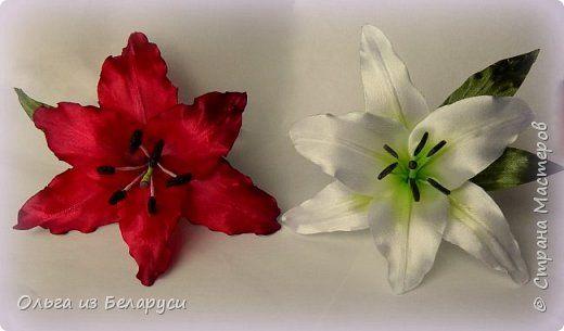 Każdy, dzień dobry!  Chcę ci powiedzieć, jak to robię dla pręcików i słupka lilii.  zdjęcie 25