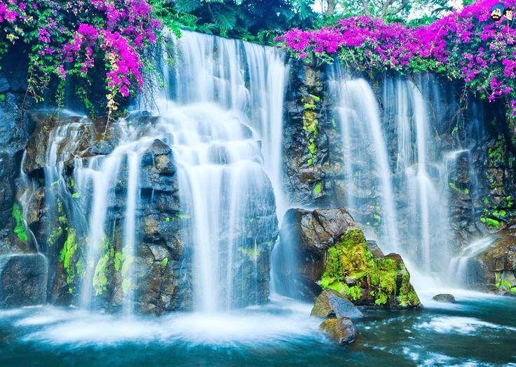 Fall Colors Wallpaper Pin By Sarah Washington On Spectacular Waterfalls