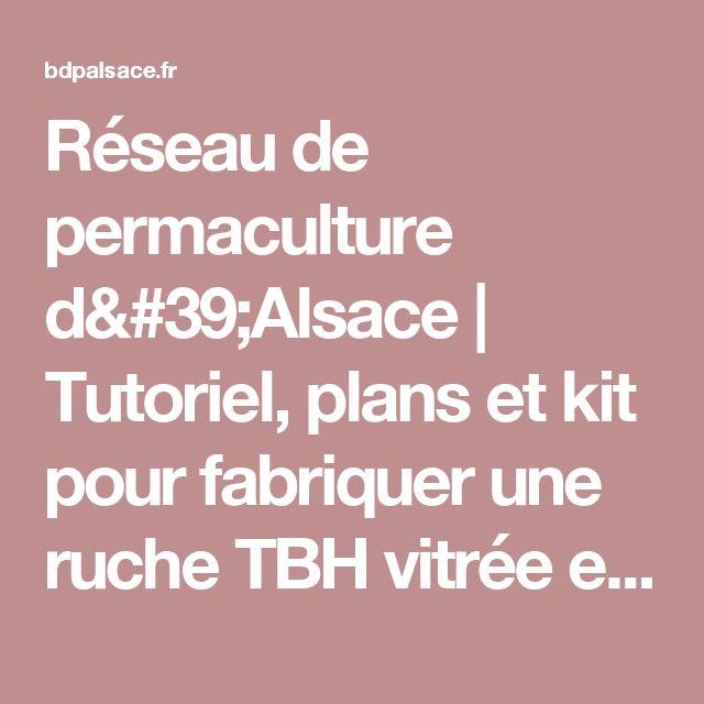 Réseau de permaculture d'Alsace | Tutoriel, plans et kit pour fabriquer une ruche TBH vitrée en bois de mélèze (modèle confortable, non transportable)