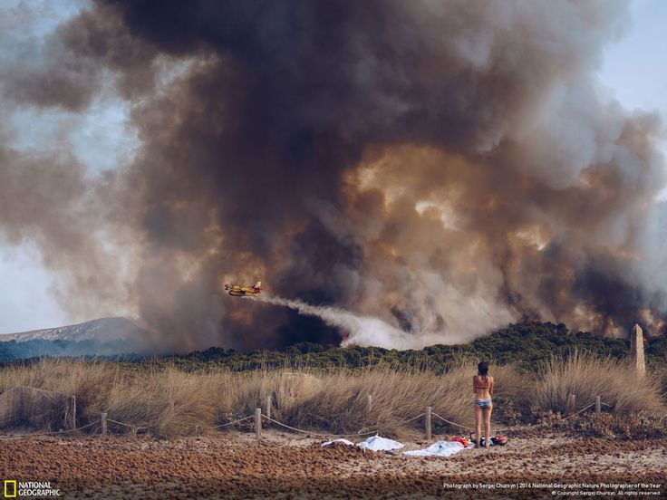 Wildfire at the beach // Photo and caption by Sergej Chursyn