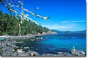 Spend a sunny afternoon hiking through East Sooke Park in Victoria BC
