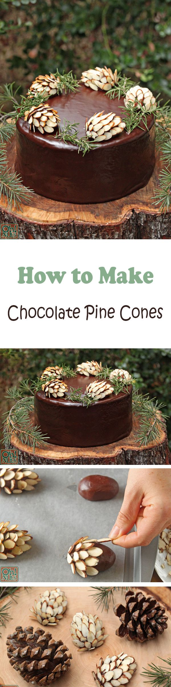 chocolate pine cones beautiful and so simple! ..tutorial