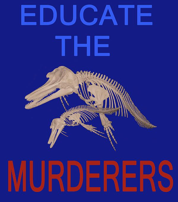 Educate the murderers  A picture made to protest against the ongoing slaughter of dolphins and Whales http://eric-kempson.artistwebsites.com www.epsilon-art.com