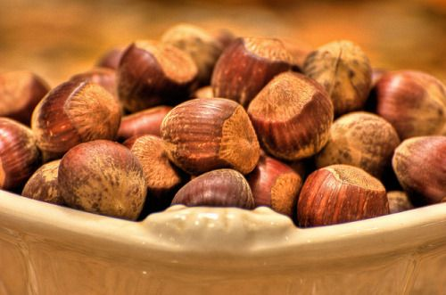 scienceandfood:  Flavor of the Month: Hazelnut  Hazelnuts may not be as popular as other nuts in the U.S. but they have quite the culinary versatility enjoyed in pralines Nutella and even as themselves. These nuts grow on hazel trees of the genus Corylus. Depending on the plant species and nut shape hazelnut also refers to the filbert nut or cobnut. Whether in the form of a nut essence or oil hazelnuts owe their sweet buttery flavor profile to the molecule filbertone. Read more  Photo…