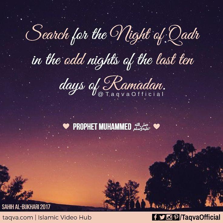 "Narrated `#Aisha: #Allah's #Messenger (ﷺ) said, ""Search for the Night of #Qadr in the odd nights of the last ten days of #Ramadan."" [Sahih al-#Bukhari 2017] #islam #islamicquote #islamicreminder #islamicreminders #ramadanreminders #ramadanreminder #ramadan2017 #ramadankareem #ramadanreflections #ramadanready #laylatulqadr #nightofpower #nightofdecree #nightofdestiny #hadith #hadis #hadeeth #hadees #hades #ramadannights #ramadanvibes #muslim #sunnah #taqva"