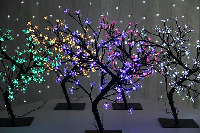 arbolitos bonsai - Buscar con Google