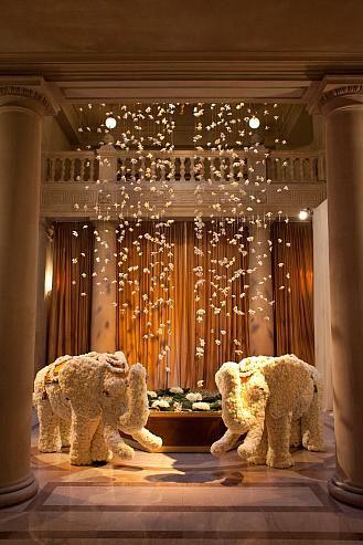 Jubilee Lau Events: San Francisco & Bay Area Wedding Planner