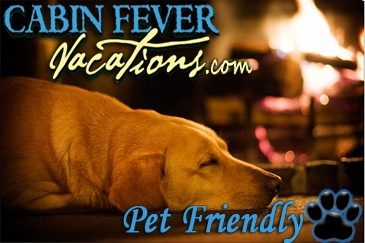Select pet friendly cabin rentals from cabin fever for Luxury pet friendly cabins in gatlinburg tn