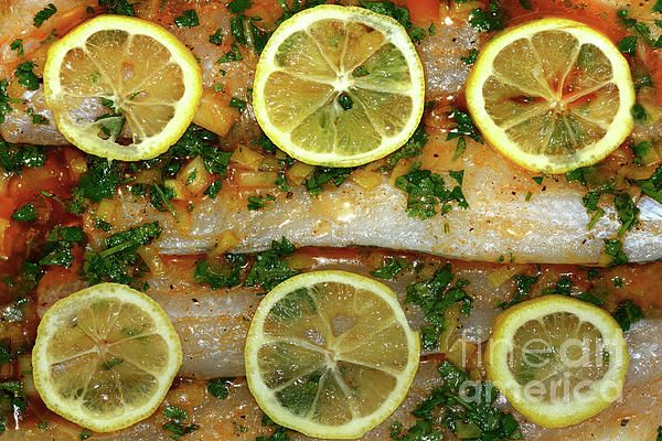 Do you like cooking / cuisine? Moist Whiting baked with Lemon and Coriander. Fish with Lemon and Coriander by Kaye Menner Photography. Prints and many useful products available at: https://kaye-menner.pixels.com/featured/fish-with-lemon-and-coriander-by-kaye-menner-kaye-menner.html