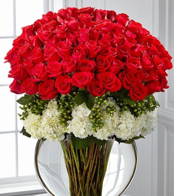 Rosas y solo rosas.