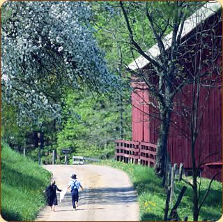 Amish children running down a road
