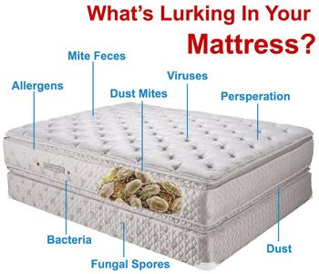 Our #mattresscleaners offer Cost Effective Solutions for Mattress Cleaning in Brisbane