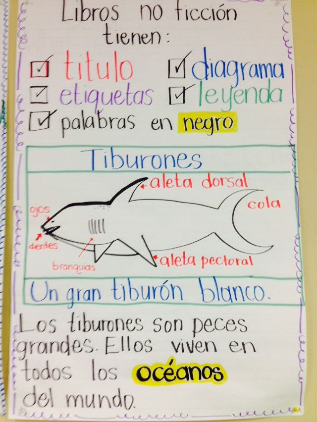Lectura no ficción Dual language class, 3rd and 4th grade