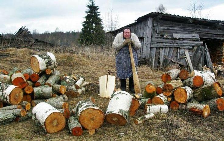 Своими руками, прикольные картинки про дрова