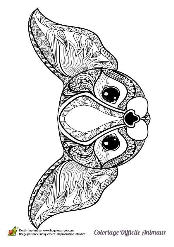 Dessin à colorier d'une tête de chien - Hugolescargot.com