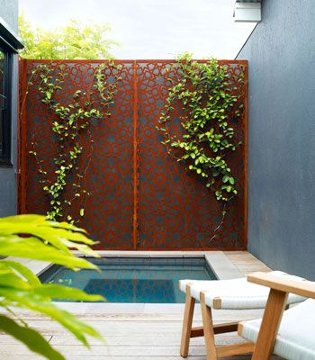 Spotted gum decking and laser-cut rusted steel add textural complexity to this courtyard. Great little plunge pool