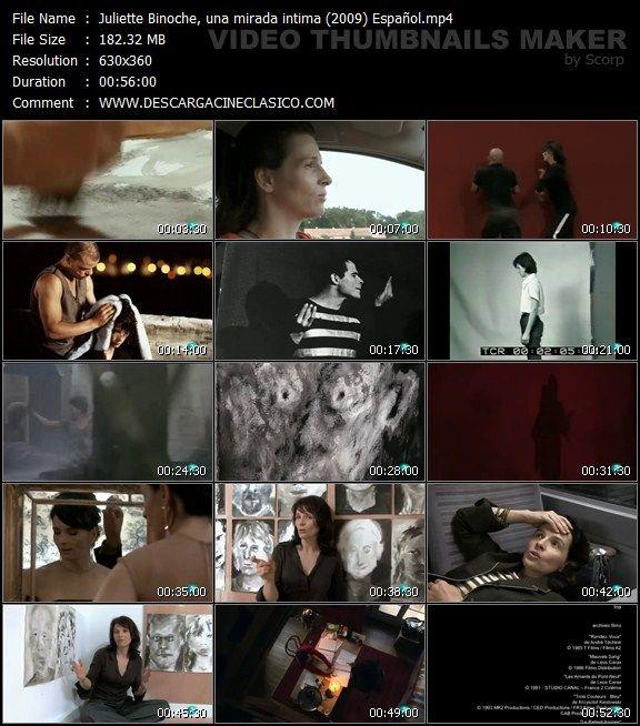 Documental: Juliette Binoche (2009)