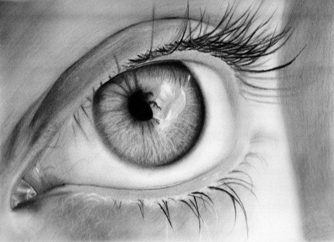 25+ best ideas about Human Eye Drawing on Pinterest ...
