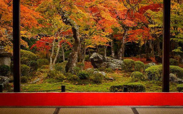 Kyoto Photo: Enko-ji Temple With Fiery Maple Leaves