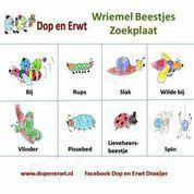 Stichting Dop en Erwt leert kinderen op een leuke manier omgaan met de beestjes in de tuin. Ook wil Dop en Erwt kinderen leren dat voedsel uit de tuin komt en niet uit de supermarkt. Lees alles op http://voordewereldvanmorgen.nl/Kom_in_actie/ASN_Bank_Wereldprijs/Projecten/dop_en_erwt_wriemelbeestjes