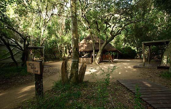 Narina bush camp in the Addo Elephant Park #travel #SouthAfrica #camp | Kom skuil in die Narina-boskamp