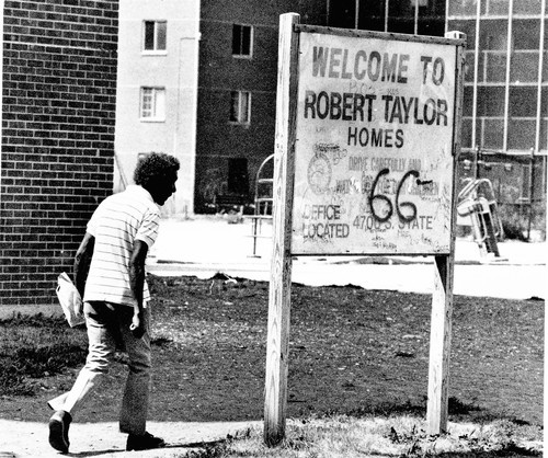 robert taylor projects