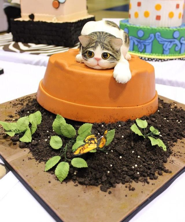 82 best Cat Cakes images on Pinterest Cat cakes Sweet treats and