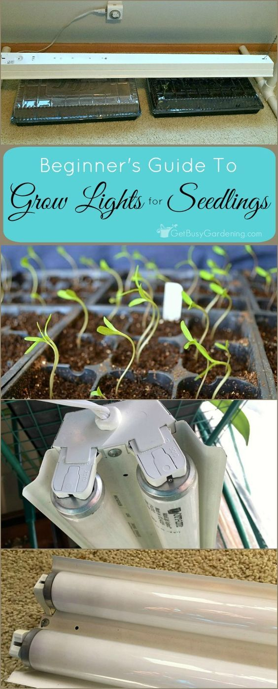 35 best Hydroponic Growing Systems images on Pinterest | Hydroponic ...