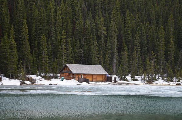 Cabin on Lake Louise by Odi Kletski Starting at $37:00