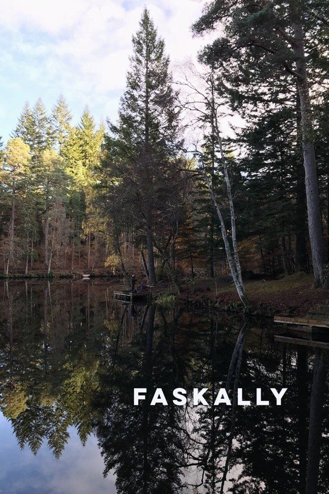 An autumn walk at Loch Dunmore and Faskally Wood, on @stellerstories