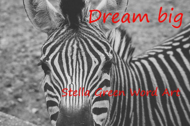zebra digital art, nursery room decor, baby gift, black and white zebra, baby room decor, zebra nursery room decor, instant download by StellaGreenWordArt on Etsy