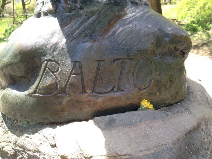 The Balto statue in Central Park.