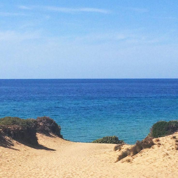 (Il mare di Scivu intravisto dalle sue candide dune lo scorso agosto. Nessuna foto potrà mai spiegare lo stupore dell'arrivo la meraviglia che si svela ad ogni passo in discesa verso la spiaggia tra il turchese del mare e le splendide pareti rocciose che la  incorniciano). Quando fa freddo ci sono i ricordi di posti come questo a scaldarti il cuore.  #sardegna #scivu #costaverde #arbus #marinadiarbus #beach #latergram #memories #mytravelgram #sea #seaview #wonderful_places #aplacetobe…